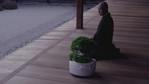 BonsAI, Tanaman Bonsai yang Terintergretasi dengan Artificial Intelligence